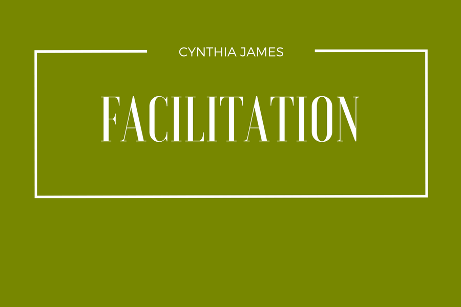 Cynthia James Facilitates Workshops and Seminars